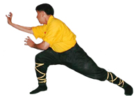 Sifu performing a hand form